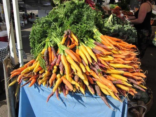 Beautiful carrots at the farmers market